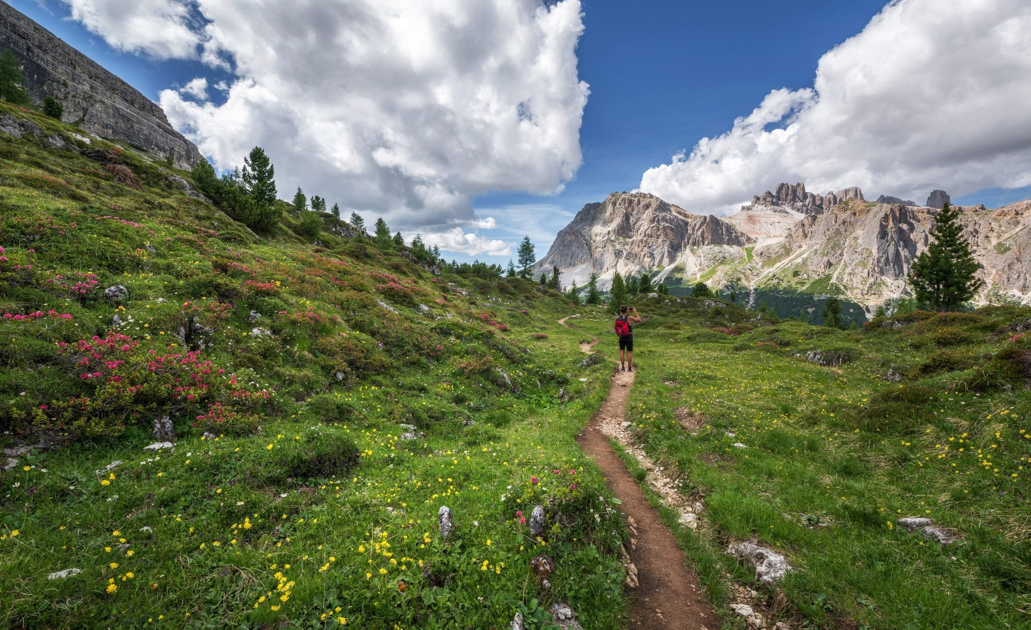 Looking to give trail running a try? Here are some great tips!